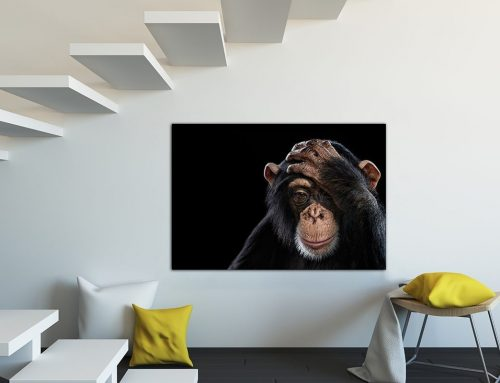 Top tips when choosing artwork for your home